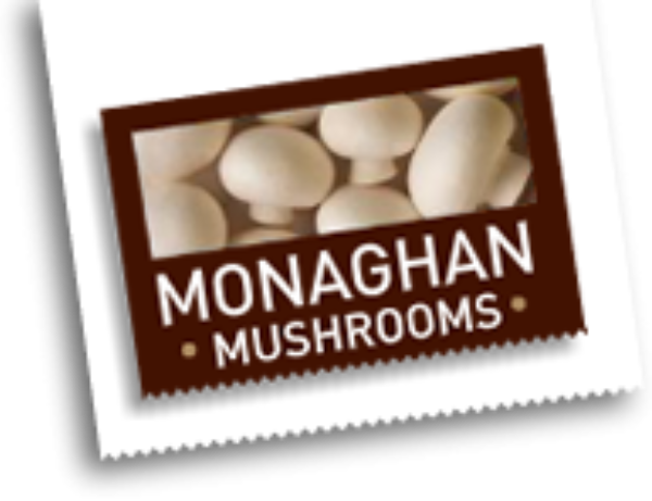 Monaghan Middlebrook Mushrooms Debt refinancing from a group of European banks.
